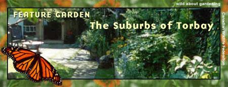 Suburb Torbay Header