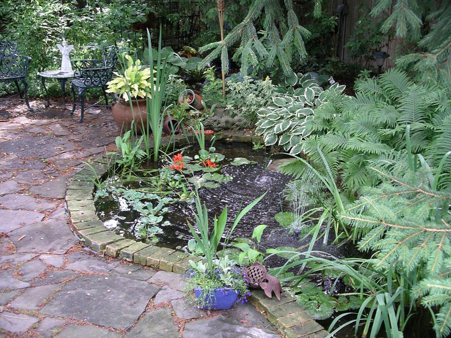 garden photos 3