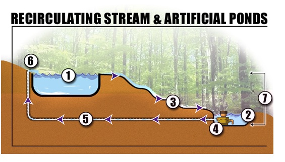 a garden stream (recirculating stream & artificial ponds)