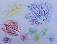 Sample leaf rubbing art
