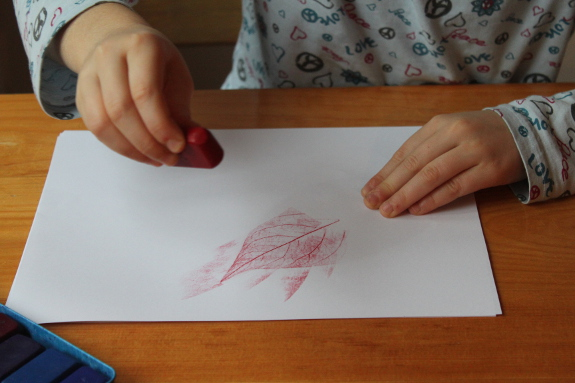 leaf rubbings 6 - 575px