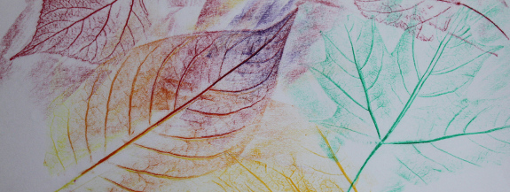 leaf rubbings 9 crop - 575px