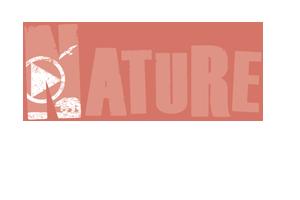 webinar flip tile fr