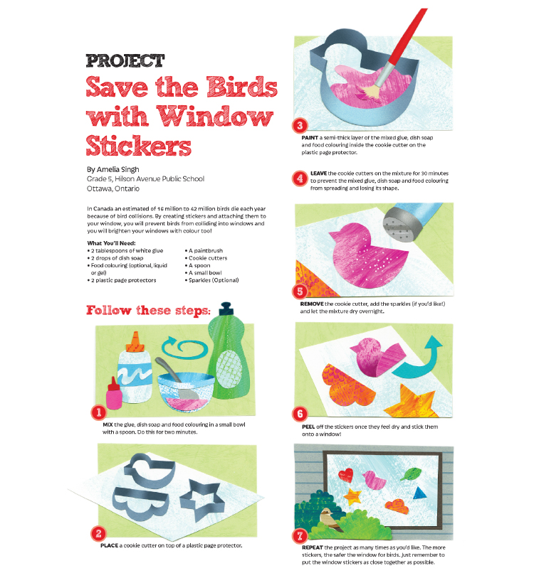 save the birds project PDF