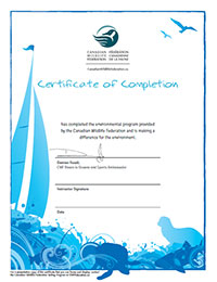 WILD about sports certificate