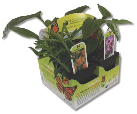 CWF Pollinator plants pack