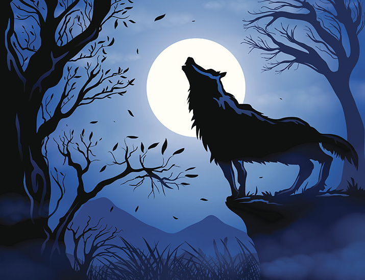 Illustration of wolf howling at the moon