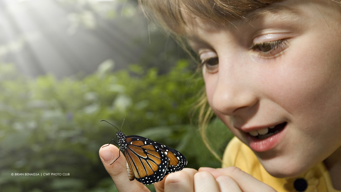 GIrl with monarch butterfly on her finger
