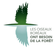 Boreal birds need half logo in french