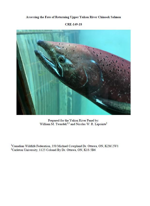 yukon salmon cover