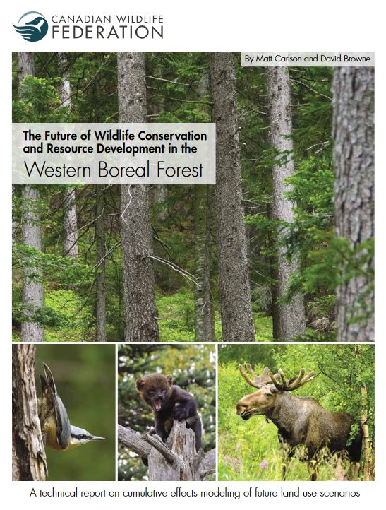 western boreal cover