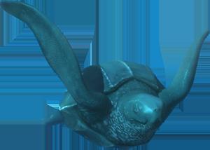 Abigail Leatherback turtle image rendering
