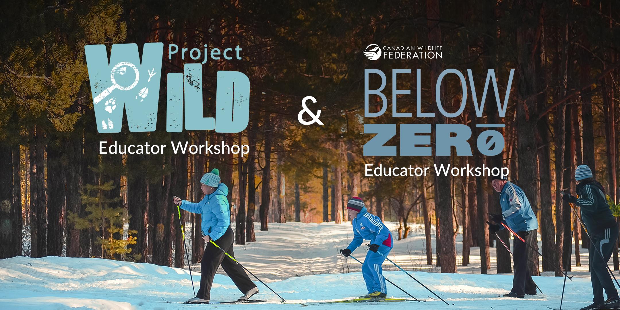 wild-project-below-zero.jpg