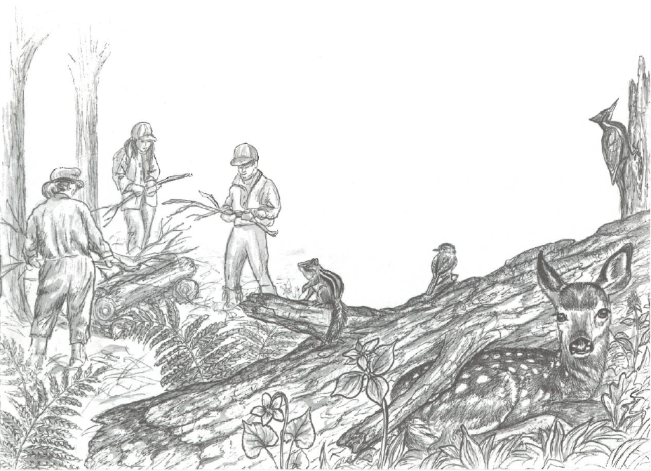 Illustration of students piling up brush