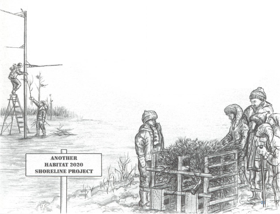 Illustration of artificial nesting structures