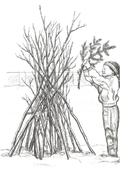 Student creating a brush pile