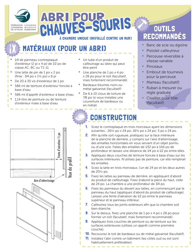 Information sheet on how to build a bat house