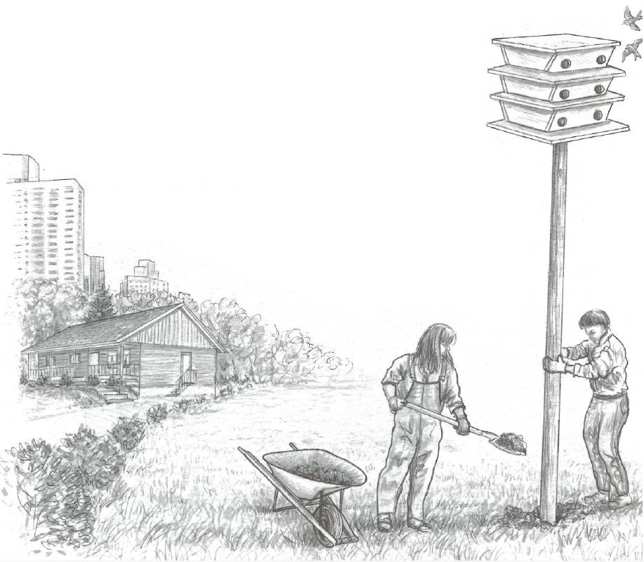 Illustration of people installing bird house