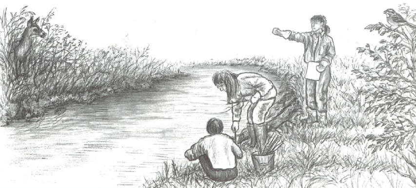 Illustration of children by a streambank