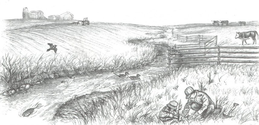 Illustration of people planting beside a river