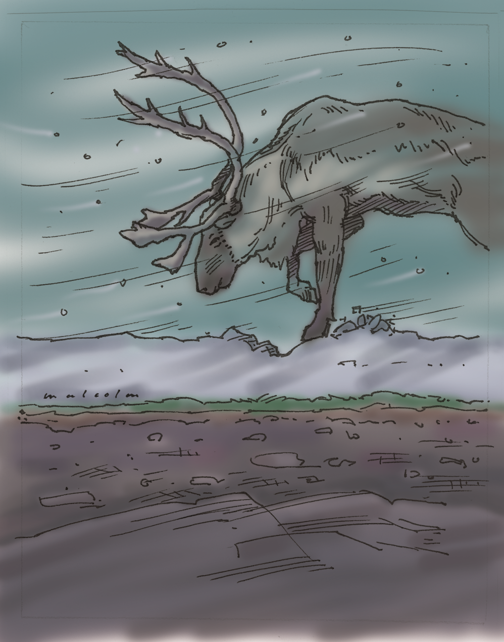Artwork of caribou in a storm