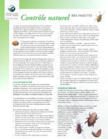 Control Des Insects