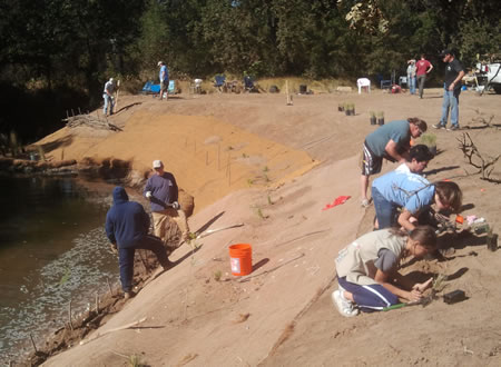 People working on a shoreline restoration project